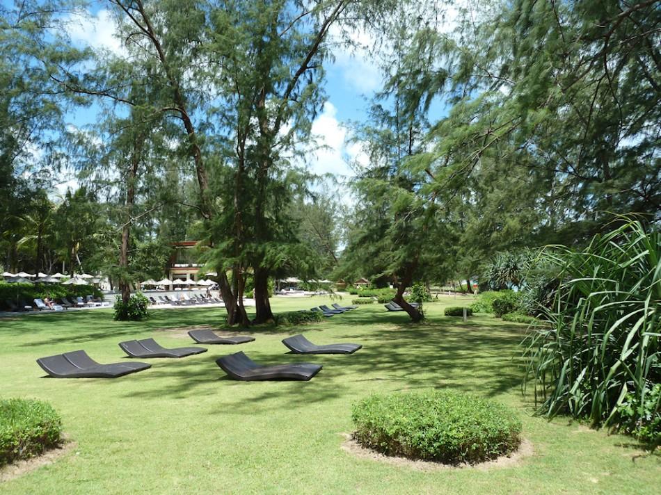 1000 Garten
